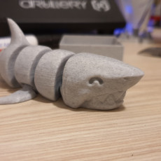 Picture of print of Articulated Shark This print has been uploaded by Razvan Steffelbauer