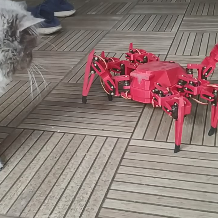 Hex Robo V1