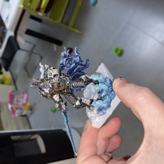 Picture of print of Lich King