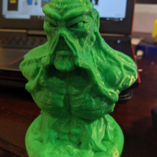 Picture of print of SWAMP THING