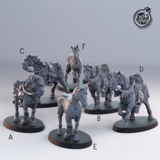 Horses (Pre-Supported)