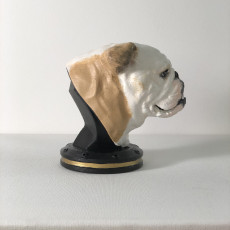 Picture of print of English Bulldog