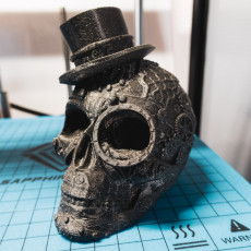 Picture of print of Steam Skull This print has been uploaded by alpineMakes