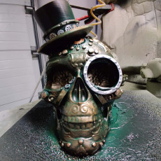 Picture of print of Steam Skull