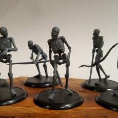 230x230 skeleton mob