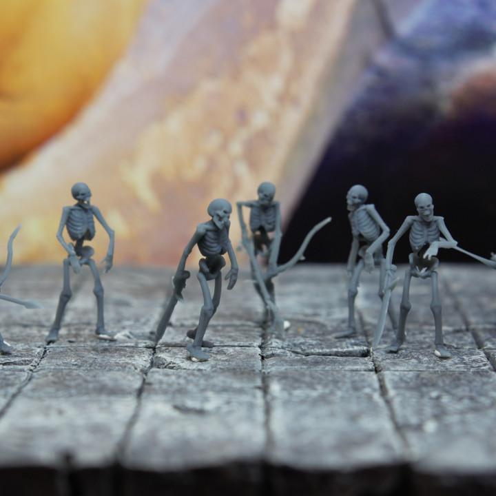 Undead Skeleton Swordsmen - Tabletop Miniature