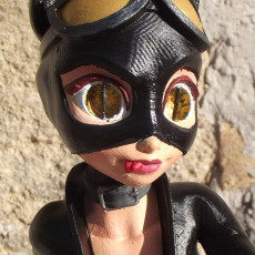 Picture of print of Catwoman, in style, as in stylised! A fan work with love!