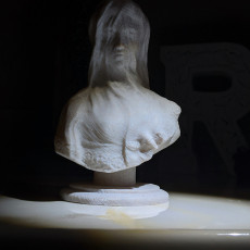 Picture of print of Bust of a veiled woman