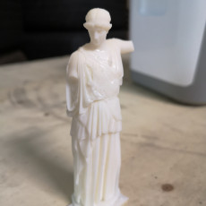 Picture of print of Lemnian Athena