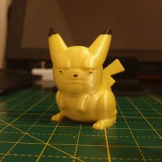 One Pissed Off Pikachu, miniature pokemon meme