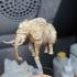 Ornate Elephant print image