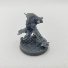 Picture of print of Wereshark_Set
