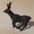 Roe Miniatures Bundle image