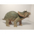 Baby Triceratops image