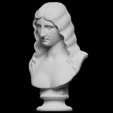 Bust of a Barbarian Woman