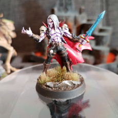 Picture of print of Soulless (Vampire) Bloodseekers - 4 Modular + 2 Heroes