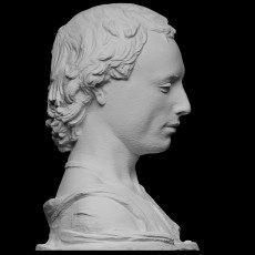 Bust of a Young Man with a Medallion