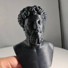 Picture of print of Portrait of Marcus Aurelius This print has been uploaded by Erwin Boxen