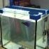 aquarium lamp image