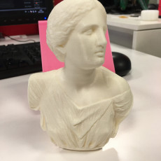 Picture of print of Bust from The Daughters of Niobe