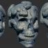 Skull Snakes image