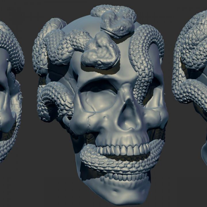 Skull Snakes