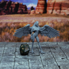 Picture of print of Harpy - D&D Miniature