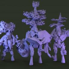 Tree  Knights