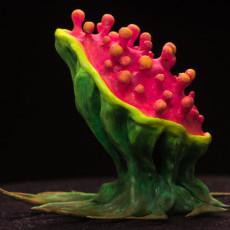 Tabletop plant:  Tearing Plant  (Alien Vegetation 14)