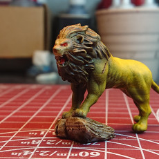 Picture of print of Lion