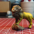 Lion print image
