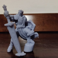 Picture of print of Male Paladin - Human/Half-orc (32mm scale miniature) 这个打印已上传 Alb