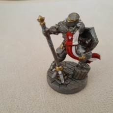 Picture of print of Male Paladin - Human/Half-orc (32mm scale miniature) 这个打印已上传 Ary R.