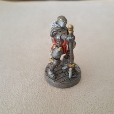 Picture of print of Male Paladin - Human/Half-orc (32mm scale miniature)