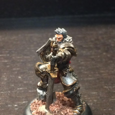 Picture of print of Male Paladin - Human/Half-orc (32mm scale miniature) 这个打印已上传 Christopher Sander Christiansen