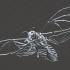 Deaths Head Hawkmoth Skeleton image