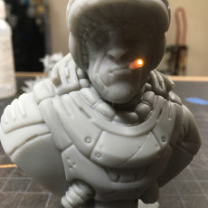 "Picture of print of ""Sarge"" bust"