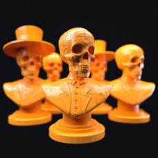 Mr Muertos (Dia de los Muertos bust)