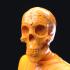 Mr Muertos (Dia de los Muertos bust) image