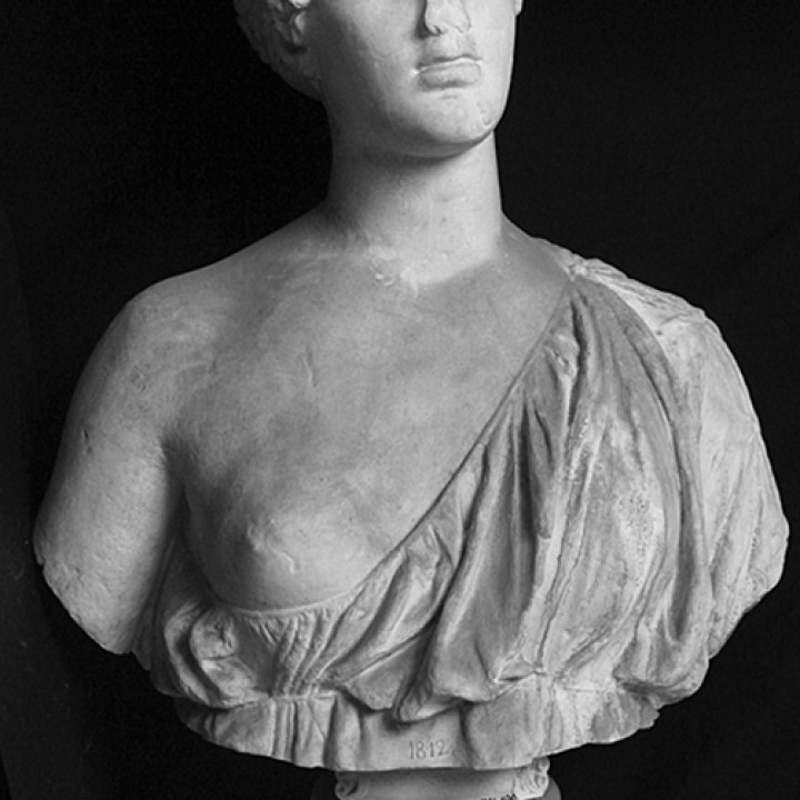 Bust of a woman,  The Oxford Bust