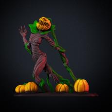Pumpkin Queen - single and multimaterial