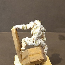 Picture of print of Mummy_01