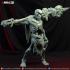 Skeleton_02 image