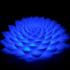 Poly Lotus Novatrope image