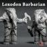 Loxodon Barbarian - Dnd Character- 2 Poses image
