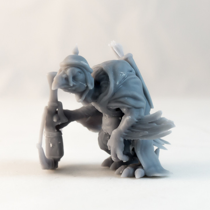 Vulture Archer - DnD Monster - 2 Poses