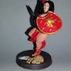 Picture of print of Amazon Warrior from AMAZONS! Kickstarter