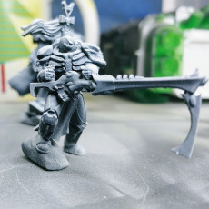 Picture of print of Grim reaper leader aspect warrior