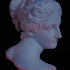 Picture of print of Venus Italica (Bust)