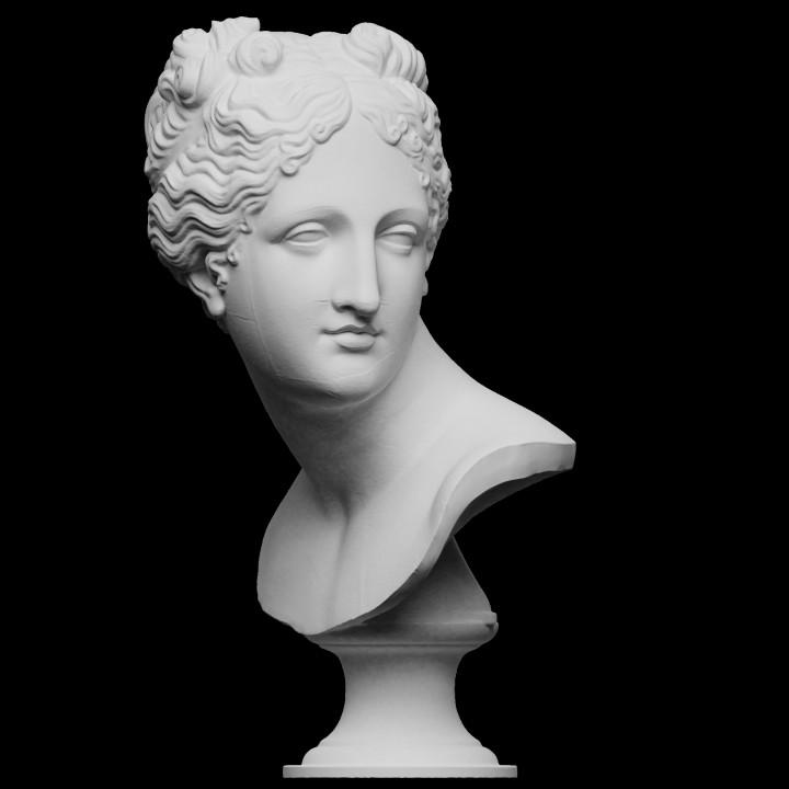 Venus Italica (Bust)